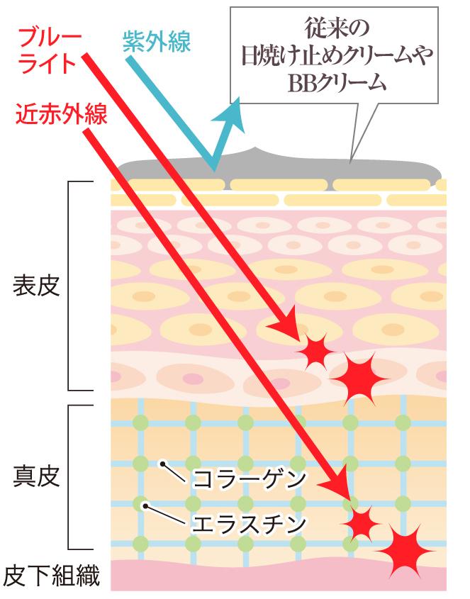 近赤外線によるお肌へのダメージ2